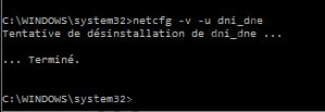 Windows 10 connexion cartes netcfg 2